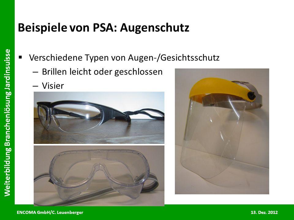 ENCOMA GmbH/C. Leuenberger 13. Dez. 2012 Weiterbildung Branchenlösung Jardinsuisse Beispiele von PSA: Augenschutz Verschiedene Typen von Augen-/Gesich