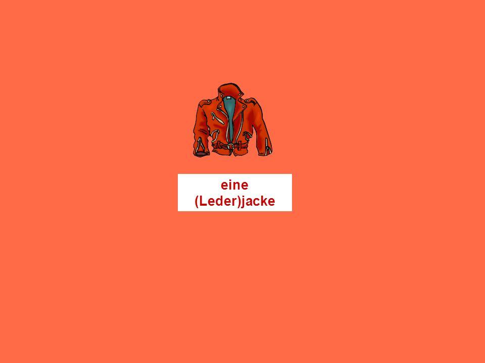 einen Pullovereinen Anorakeinen Rock einen Schaleinen Huteinen Schlipseinen Anzug eine Mützeeine Hoseeine Bluse