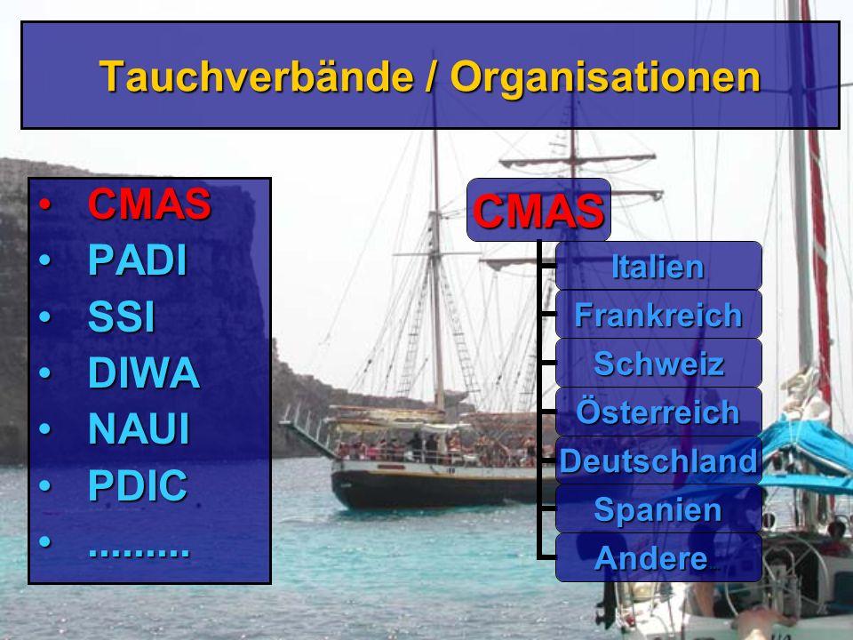 Bevor es losgeht...!...ein Wort zu den Tauchorganisationen...ein Wort zu den Tauchorganisationen...zu den Lehrgangsinhalten...zu den Lehrgangsinhalten...zur Organisation...zur Organisation...und einigen Grundregeln...und einigen Grundregeln Detlef Braunroth, 2003 Detlef Braunroth, 2003