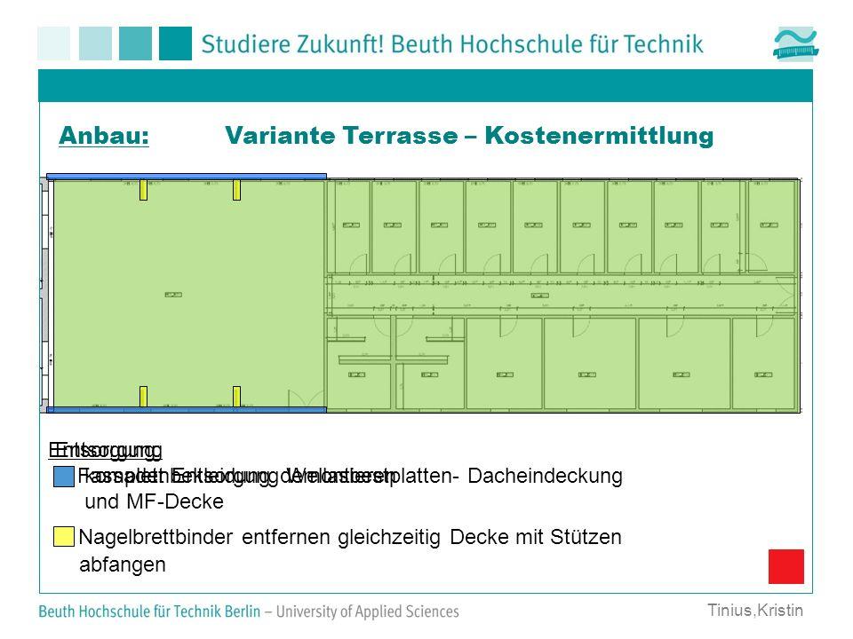 Variante Terrasse – Kostenermittlung Entsorgung komplett Entsorgung Wellasbestplatten- Dacheindeckung und MF-Decke Entsorgung: Fassadenbekleidung demo