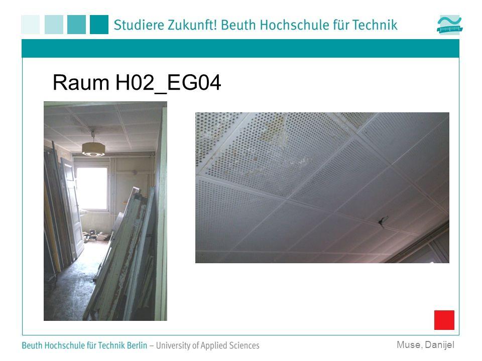 Raum H02_EG04 Muse, Danijel