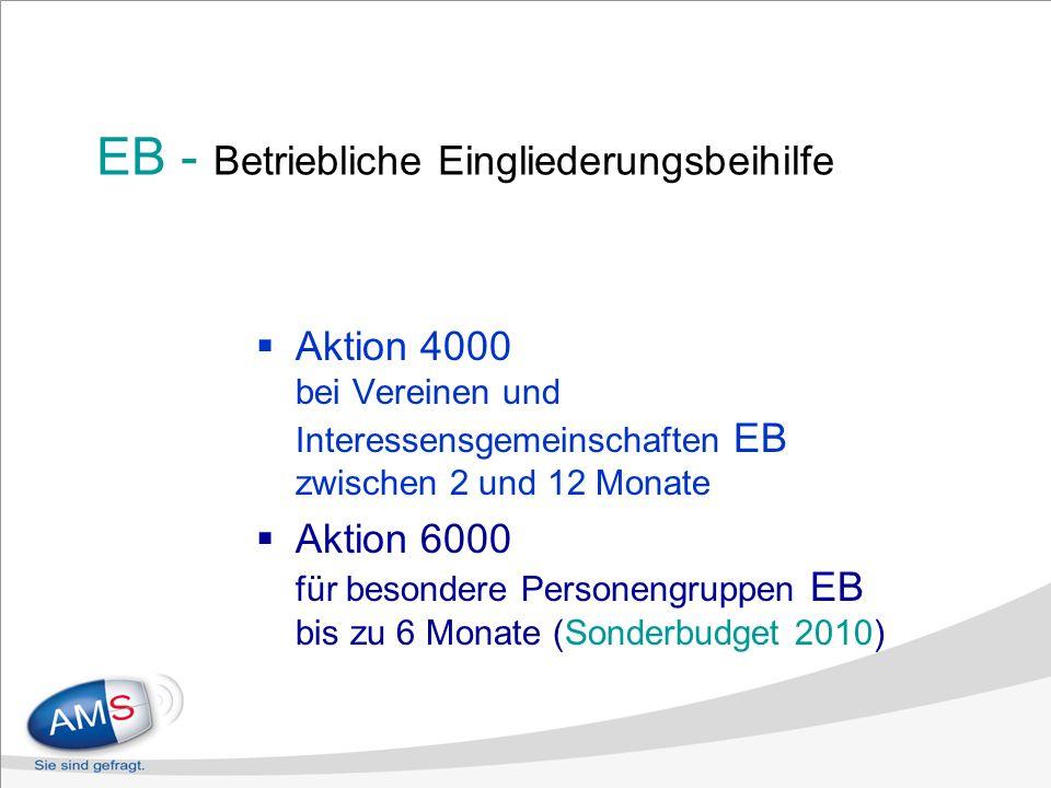 EB - Betriebliche Eingliederungsbeihilfe Aktion 4000 bei Vereinen und Interessensgemeinschaften EB zwischen 2 und 12 Monate Aktion 6000 für besondere Personengruppen EB bis zu 6 Monate (Sonderbudget 2010)