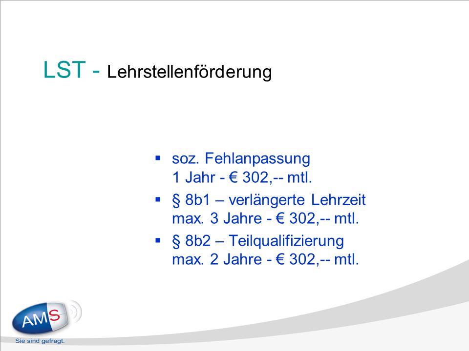 LST - Lehrstellenförderung soz. Fehlanpassung 1 Jahr - 302,-- mtl.