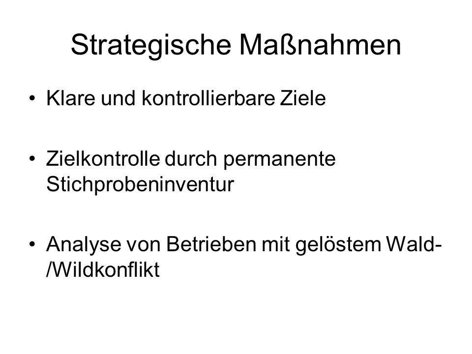 Strategische Maßnahmen Klare und kontrollierbare Ziele Zielkontrolle durch permanente Stichprobeninventur Analyse von Betrieben mit gelöstem Wald- /Wi