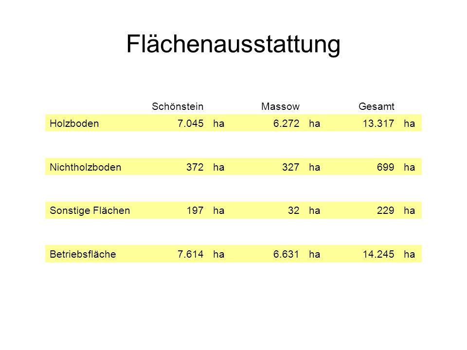 Flächenausstattung SchönsteinMassowGesamt Holzboden7.045ha6.272ha13.317ha Nichtholzboden372ha327ha699ha Sonstige Flächen197ha32ha229ha Betriebsfläche7