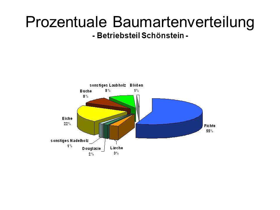 Prozentuale Baumartenverteilung - Betriebsteil Schönstein -
