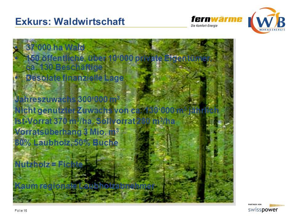 Folie 15 Exkurs: Waldwirtschaft 37000 ha Wald 150 öffentliche, über 10000 private Eigentümer, ca. 130 Beschäftige Desolate finanzielle Lage Jahreszuwa