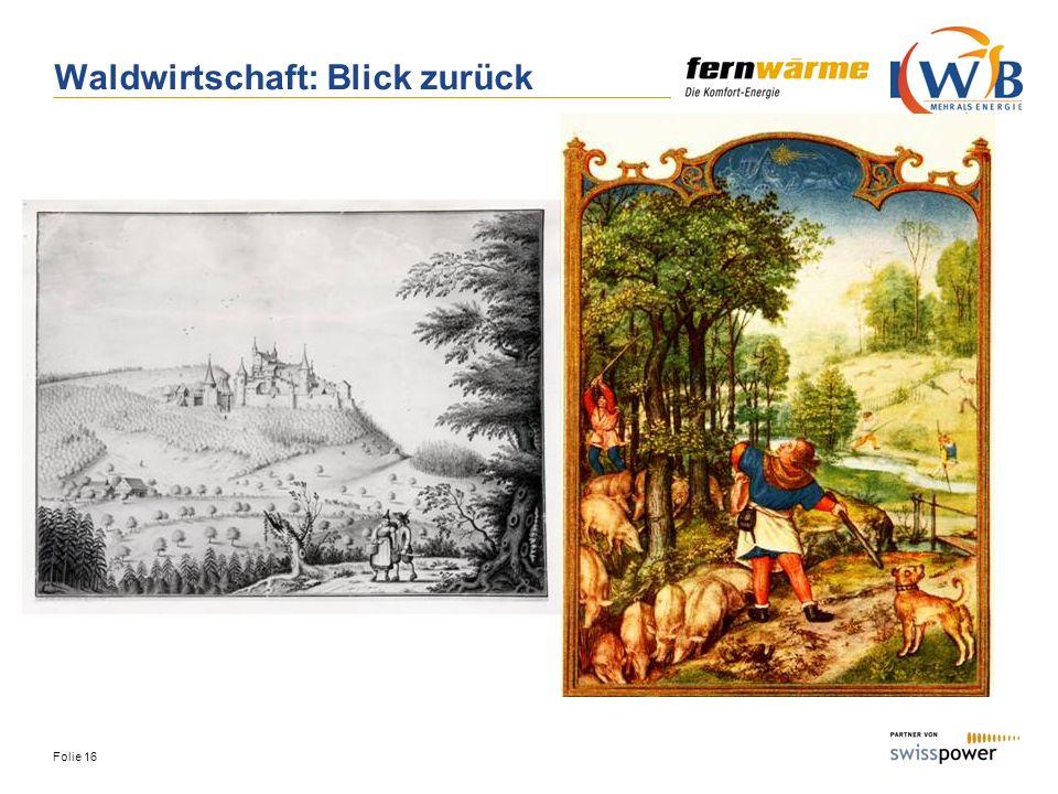 Folie 16 Waldwirtschaft: Blick zurück