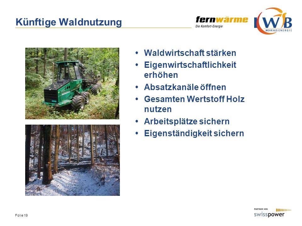 Folie 19 Künftige Waldnutzung Waldwirtschaft stärken Eigenwirtschaftlichkeit erhöhen Absatzkanäle öffnen Gesamten Wertstoff Holz nutzen Arbeitsplätze