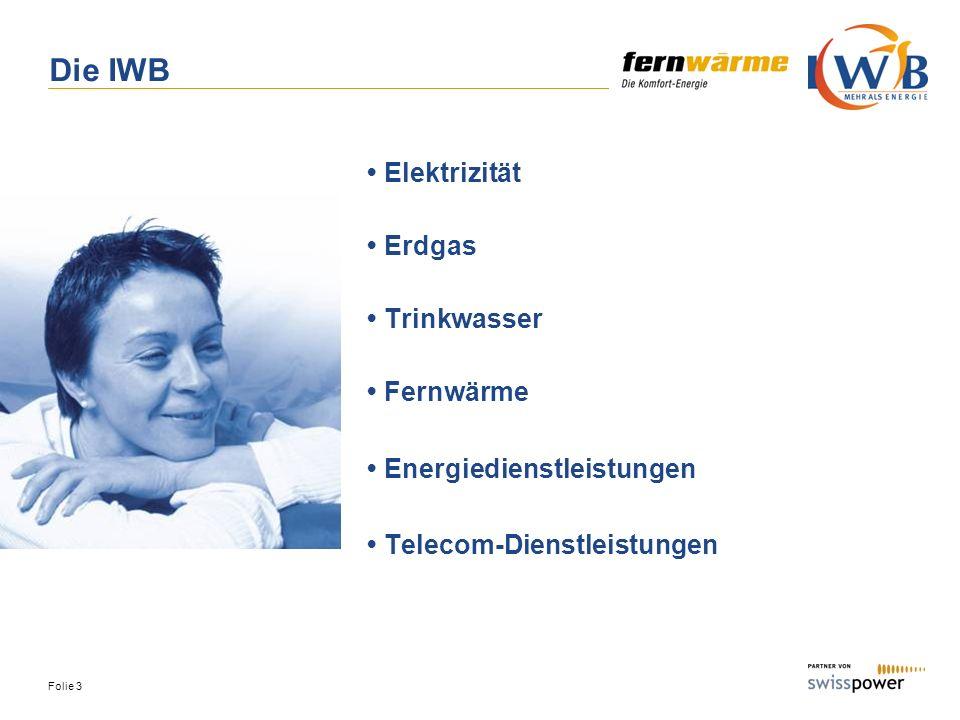 Geschäftsmodell Werteflüsse IWB Holzkraftwerk Basel AG ebl HZN Strom Lief./Verg.
