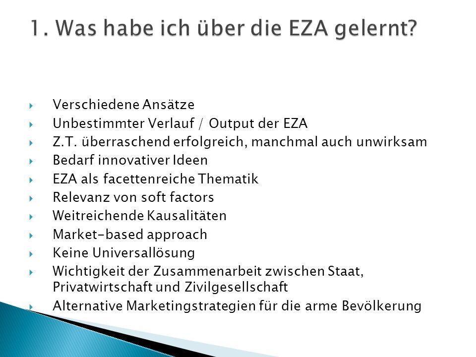 Verschiedene Ansätze Unbestimmter Verlauf / Output der EZA Z.T. überraschend erfolgreich, manchmal auch unwirksam Bedarf innovativer Ideen EZA als fac