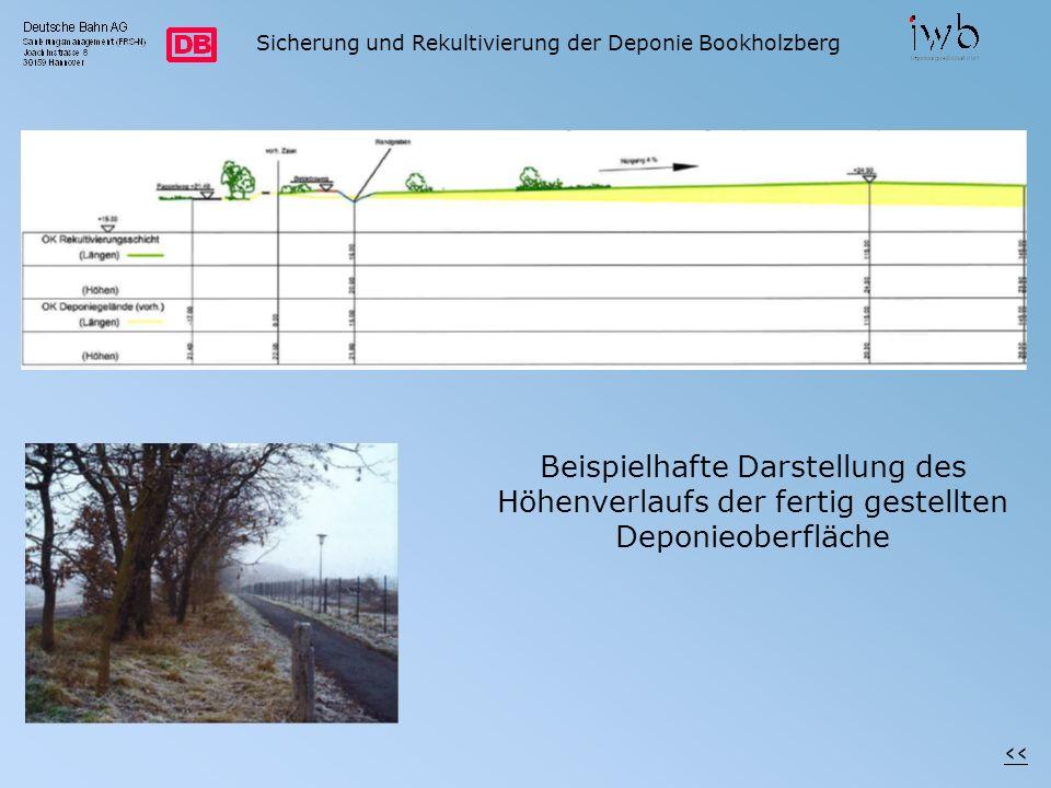 Sicherung und Rekultivierung der Deponie Bookholzberg Beispielhafte Darstellung des Höhenverlaufs der fertig gestellten Deponieoberfläche