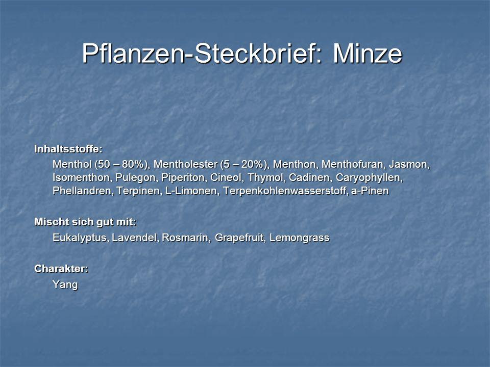 Pflanzen-Steckbrief: Minze Inhaltsstoffe: Menthol (50 – 80%), Mentholester (5 – 20%), Menthon, Menthofuran, Jasmon, Isomenthon, Pulegon, Piperiton, Ci