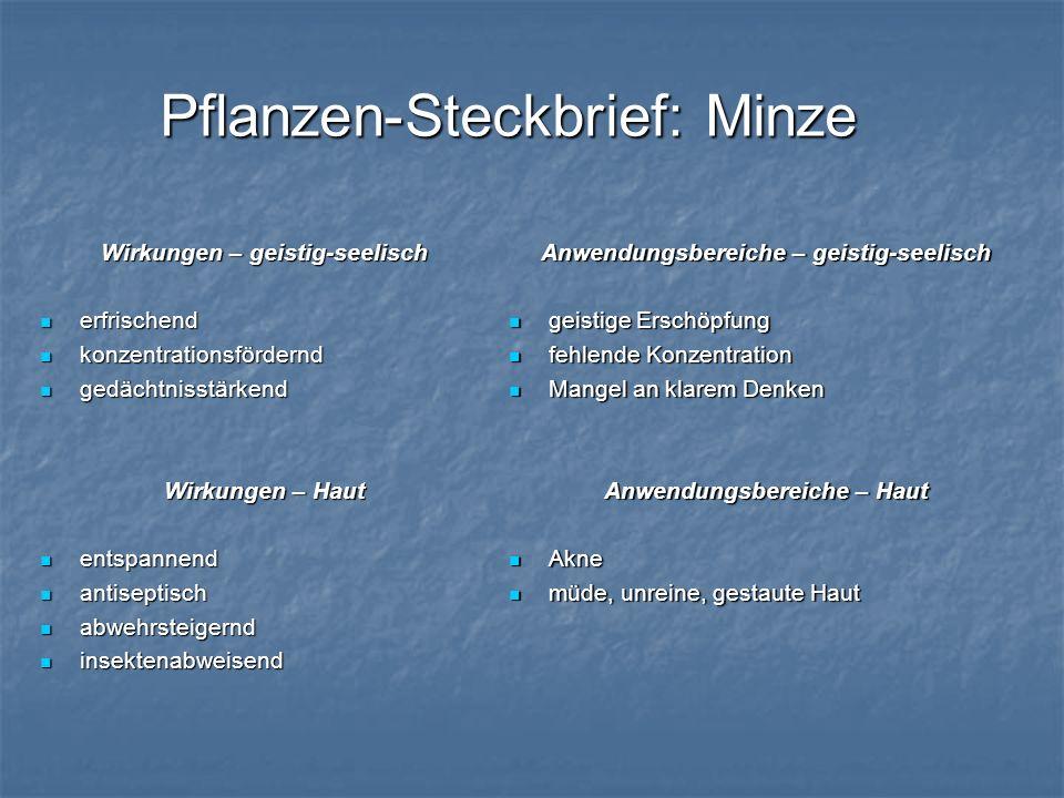 Pflanzen-Steckbrief: Minze Wirkungen – geistig-seelisch erfrischend erfrischend konzentrationsfördernd konzentrationsfördernd gedächtnisstärkend gedäc