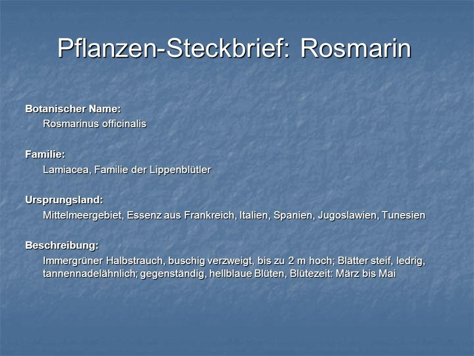 Pflanzen-Steckbrief: Rosmarin Botanischer Name: Rosmarinus officinalis Familie: Lamiacea, Familie der Lippenblütler Ursprungsland: Mittelmeergebiet, E