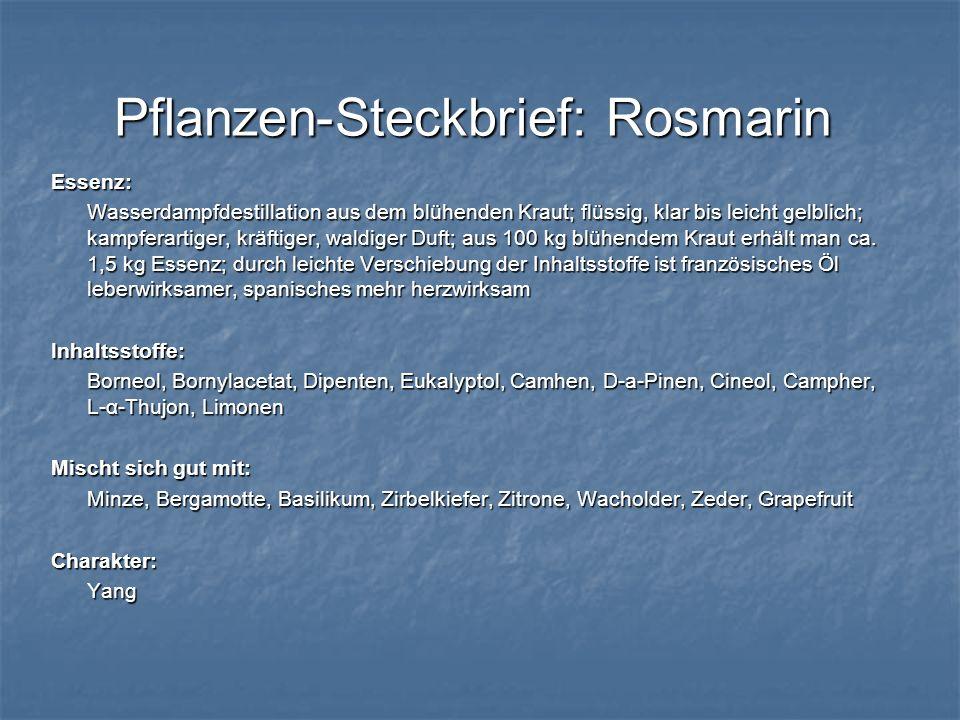 Pflanzen-Steckbrief: Rosmarin Essenz: Wasserdampfdestillation aus dem blühenden Kraut; flüssig, klar bis leicht gelblich; kampferartiger, kräftiger, w