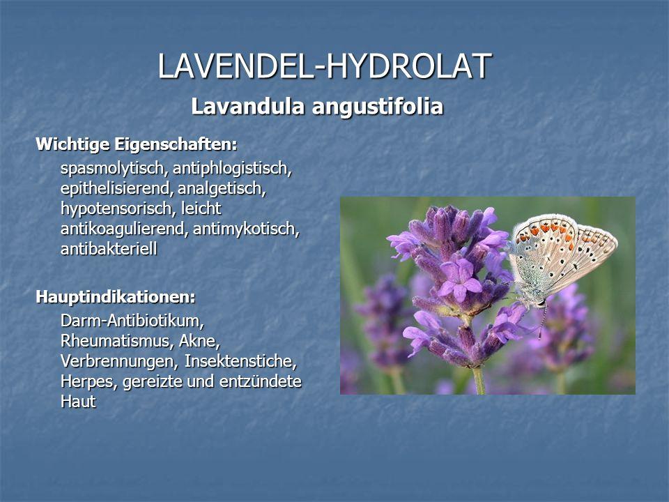 LAVENDEL-HYDROLAT Lavandula angustifolia Wichtige Eigenschaften: spasmolytisch, antiphlogistisch, epithelisierend, analgetisch, hypotensorisch, leicht