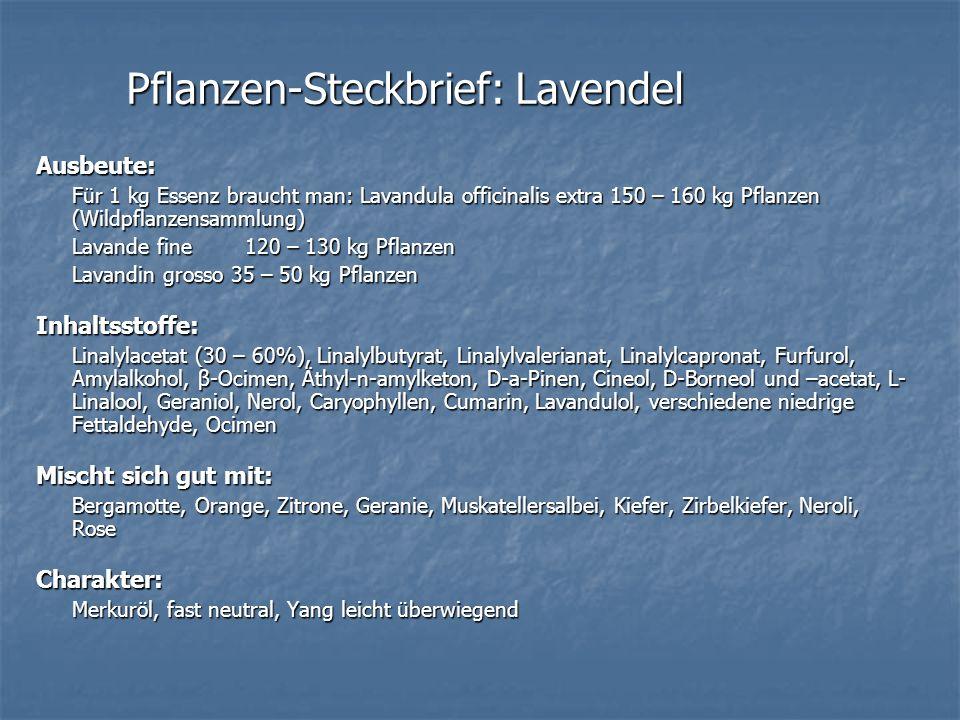 Pflanzen-Steckbrief: Lavendel Ausbeute: Für 1 kg Essenz braucht man: Lavandula officinalis extra 150 – 160 kg Pflanzen (Wildpflanzensammlung) Lavande