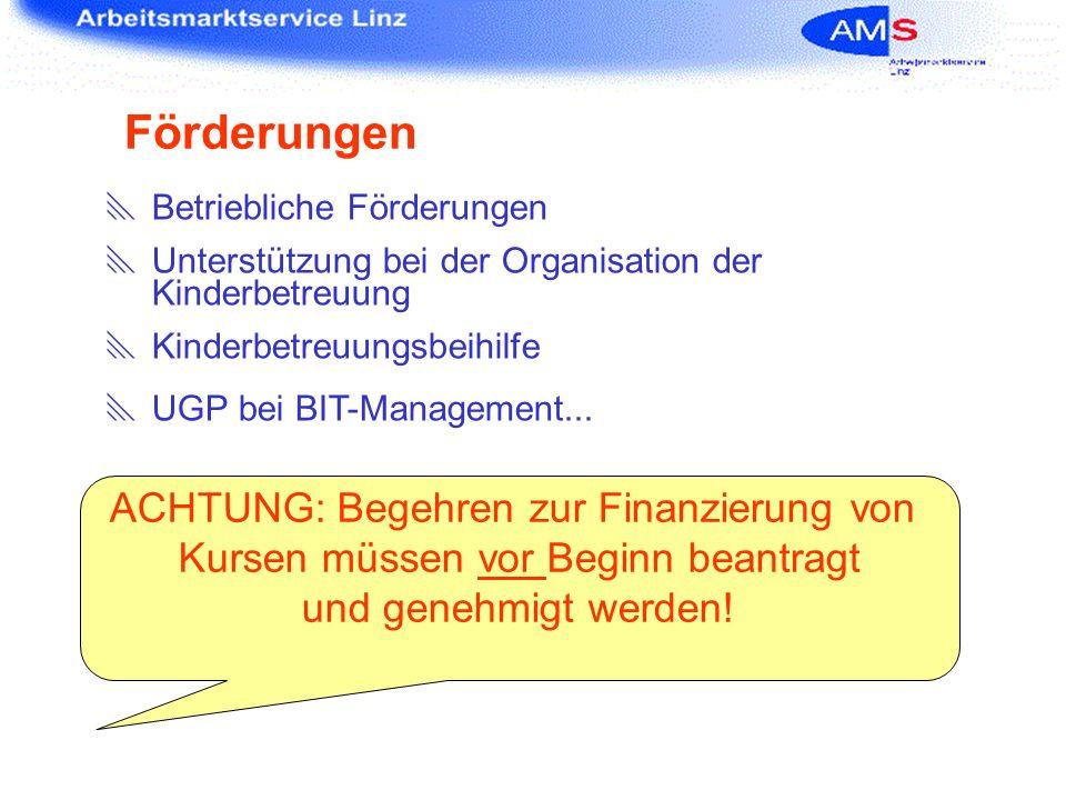 Förderungen Betriebliche Förderungen Unterstützung bei der Organisation der Kinderbetreuung Kinderbetreuungsbeihilfe UGP bei BIT-Management... ACHTUNG