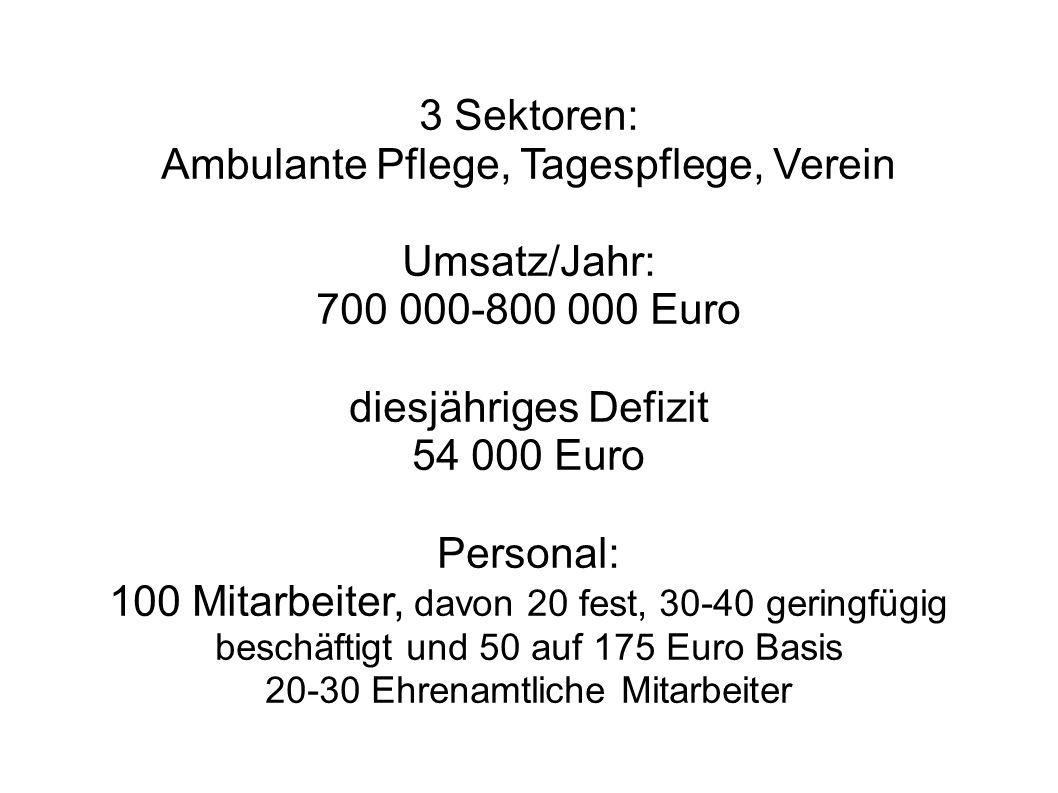 3 Sektoren: Ambulante Pflege, Tagespflege, Verein Umsatz/Jahr: 700 000-800 000 Euro diesjähriges Defizit 54 000 Euro Personal: 100 Mitarbeiter, davon 20 fest, 30-40 geringfügig beschäftigt und 50 auf 175 Euro Basis 20-30 Ehrenamtliche Mitarbeiter