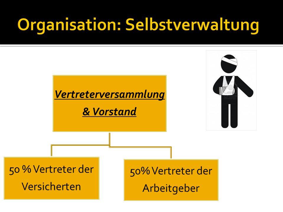 Vertreterversammlung & Vorstand 50 % Vertreter der Versicherten 50% Vertreter der Arbeitgeber