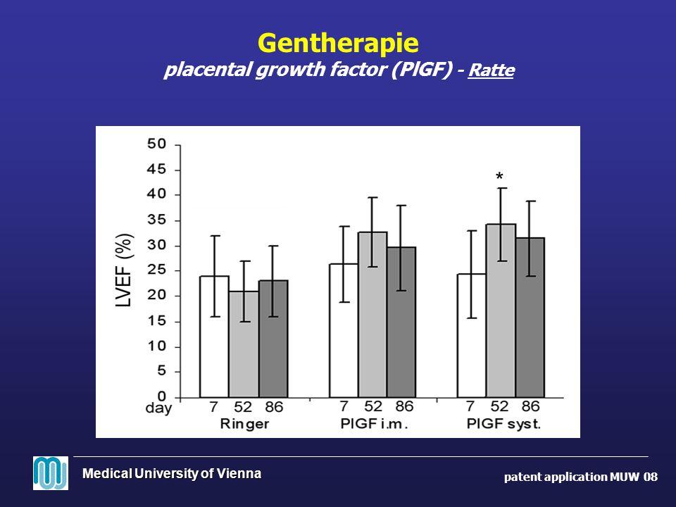 Gentherapie placental growth factor (PlGF) - Ratte patent application MUW 08 *