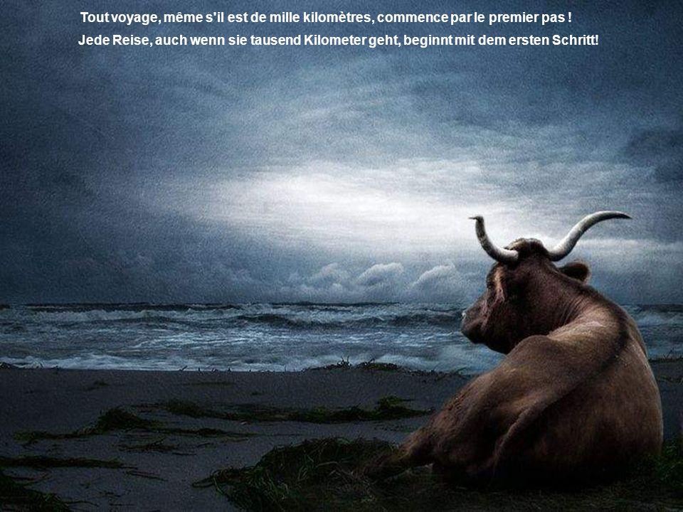 Le vrai bonheur est d'une nature discrète... On le trouve en soi-même ! Wahres Glück hat eine diskrete Natur... man findet es in sich selbst!
