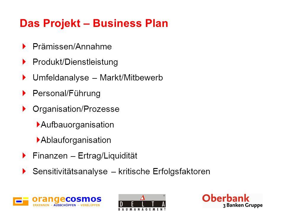 orangecosmos ERKENNEN – AUSSCHÖPFEN – VERBLÜFFEN Das Projekt – Business Plan Prämissen/Annahme Produkt/Dienstleistung Umfeldanalyse – Markt/Mitbewerb