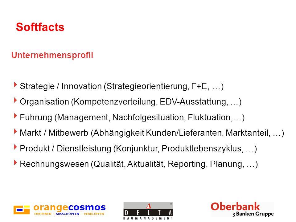 orangecosmos ERKENNEN – AUSSCHÖPFEN – VERBLÜFFEN Softfacts Unternehmensprofil Strategie / Innovation (Strategieorientierung, F+E, …) Organisation (Kom