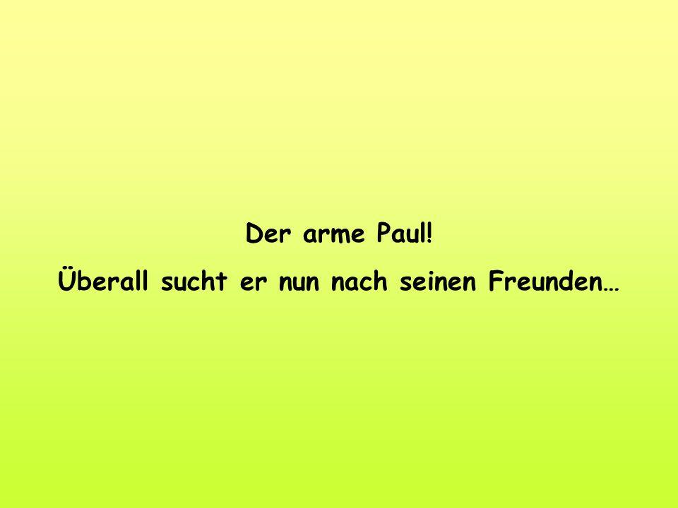 Der arme Paul! Überall sucht er nun nach seinen Freunden…