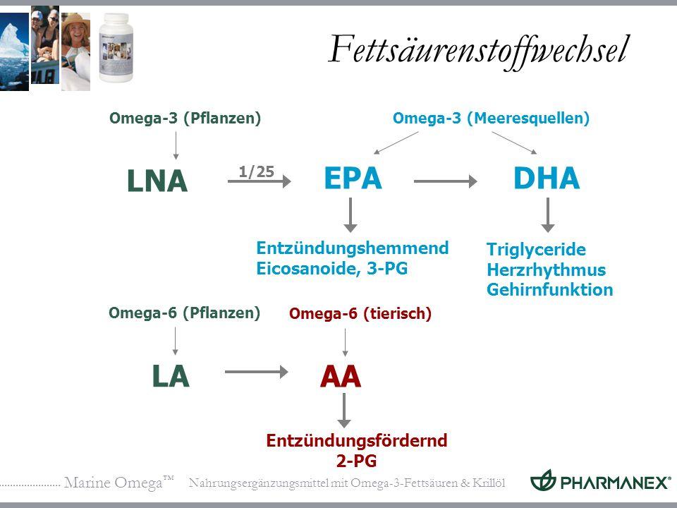Marine Omega Nahrungsergänzungsmittel mit Omega-3-Fettsäuren & Krillöl Fettsäurenstoffwechsel Entzündungsfördernd 2-PG LNA Omega-3 (Pflanzen) Entzündungshemmend Eicosanoide, 3-PG Triglyceride Herzrhythmus Gehirnfunktion Omega-3 (Meeresquellen) EPADHA 1/25 LA Omega-6 (Pflanzen) Omega-6 (tierisch) AA