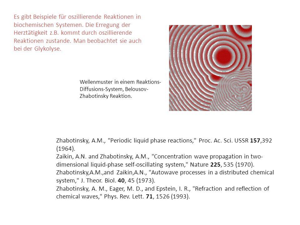 Es gibt Beispiele für oszillierende Reaktionen in biochemischen Systemen. Die Erregung der Herztätigkeit z.B. kommt durch oszillierende Reaktionen zus