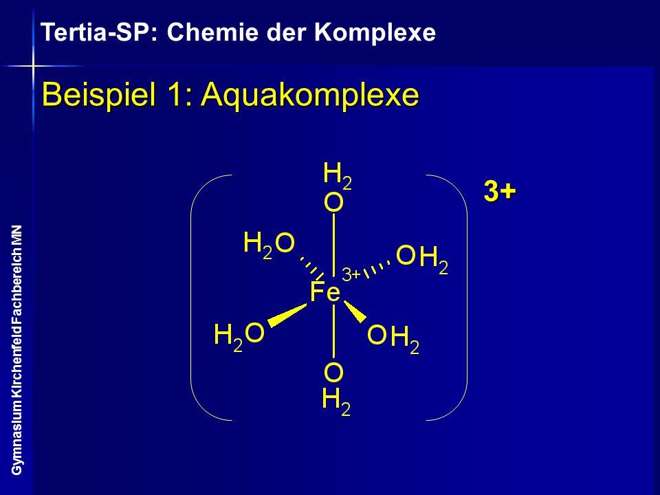 Tertia-SP: Chemie der Komplexe Gymnasium Kirchenfeld Fachbereich MN Beispiel 1: Aquakomplexe 3+
