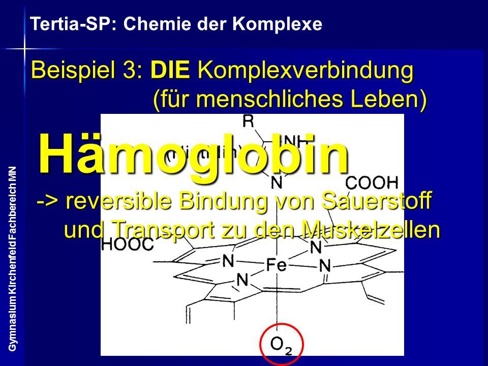Tertia-SP: Chemie der Komplexe Gymnasium Kirchenfeld Fachbereich MN Beispiel 3: DIE Komplexverbindung (für menschliches Leben) Hämoglobin -> reversibl
