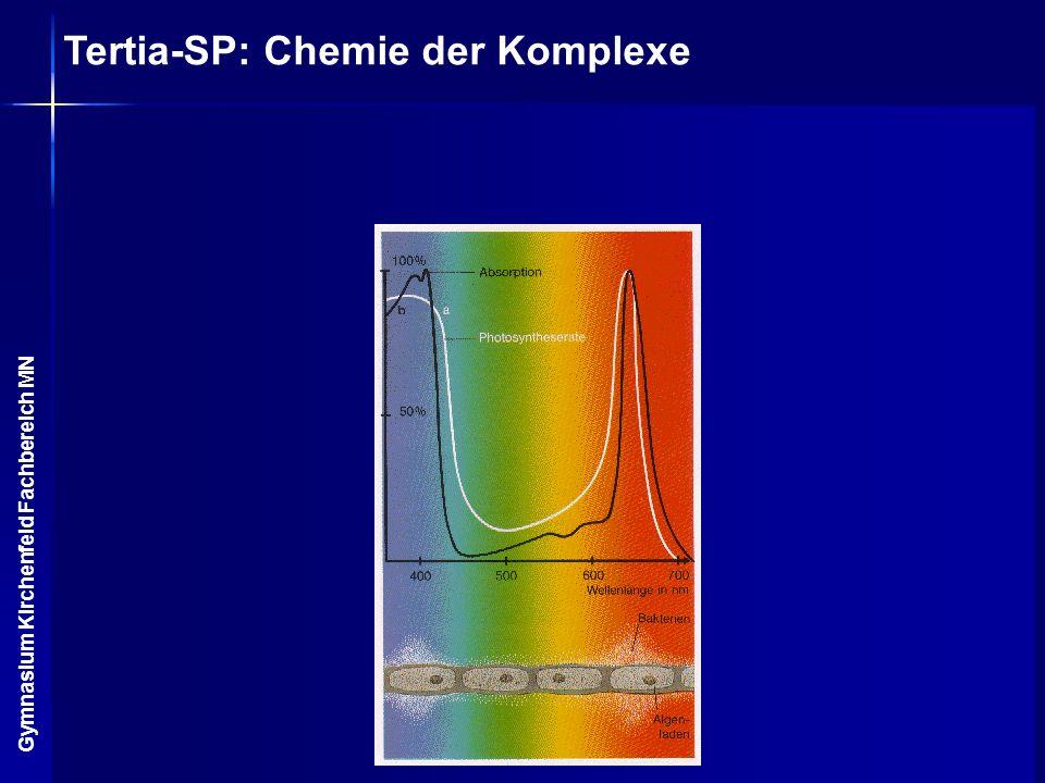 Tertia-SP: Chemie der Komplexe Gymnasium Kirchenfeld Fachbereich MN