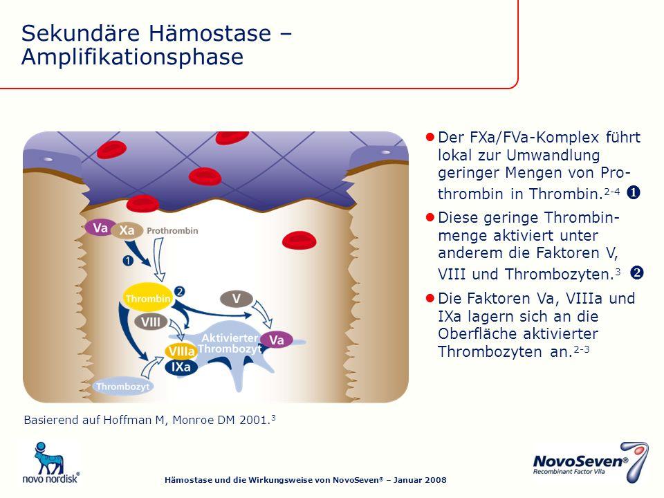 Die Faktoren Va, VIIIa und IXa lagern sich an die Oberfläche aktivierter Thrombozyten an.