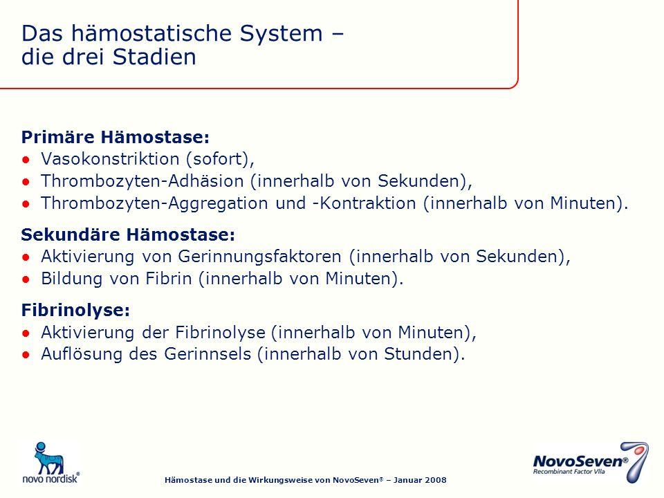 Primäre Hämostase: Vasokonstriktion (sofort), Thrombozyten-Adhäsion (innerhalb von Sekunden), Thrombozyten-Aggregation und -Kontraktion (innerhalb von Minuten).