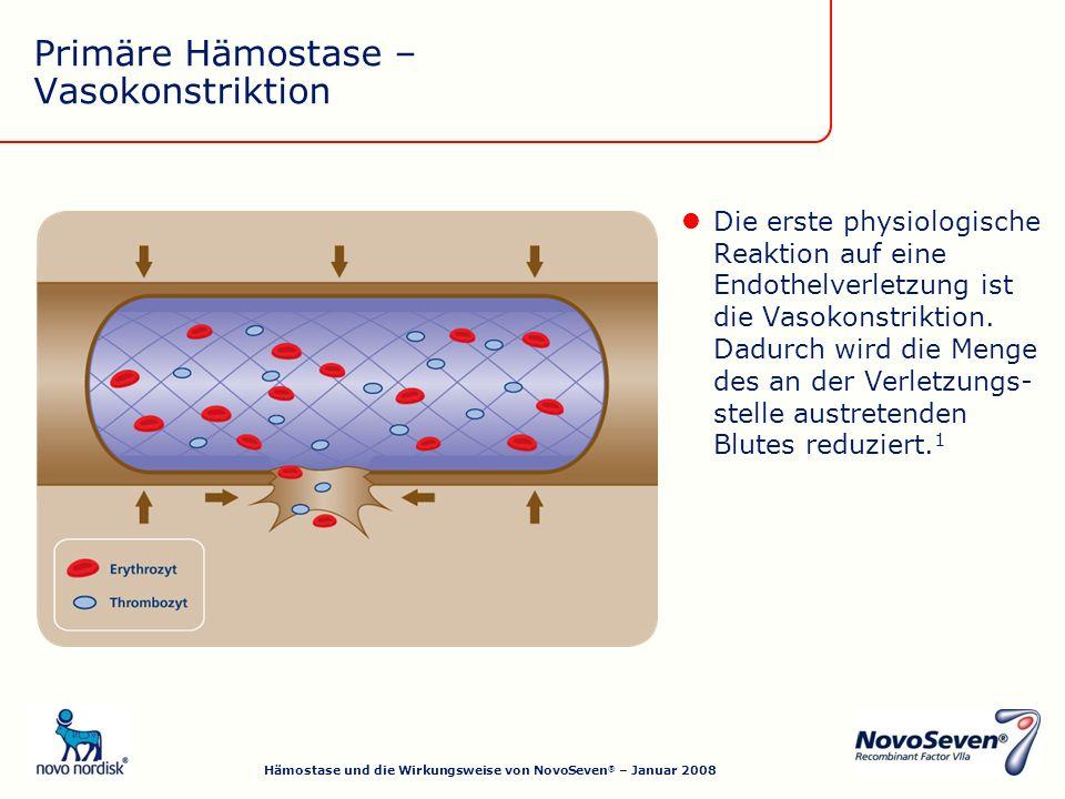 Primäre Hämostase – Vasokonstriktion Die erste physiologische Reaktion auf eine Endothelverletzung ist die Vasokonstriktion.