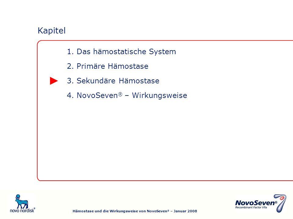 4.NovoSeven ® – Wirkungsweise 3. Sekundäre Hämostase 2.