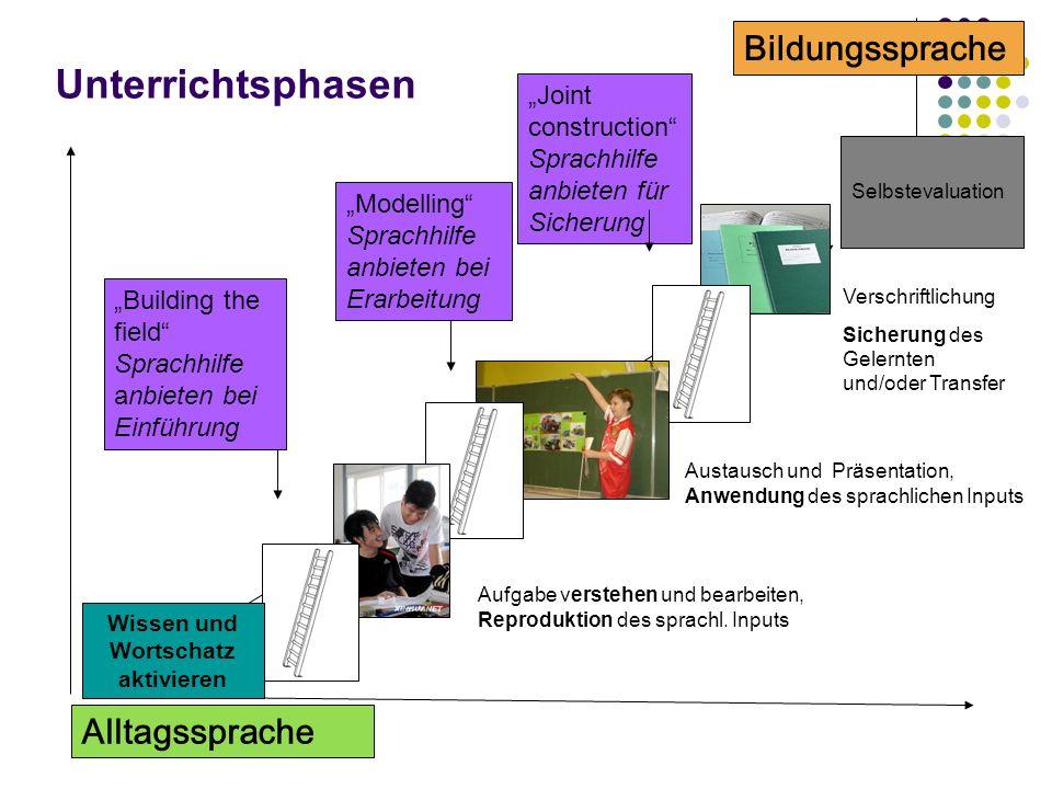 Unterrichtsphasen Bildungssprache Alltagssprache Building the field Sprachhilfe anbieten bei Einführung Modelling Sprachhilfe anbieten bei Erarbeitung