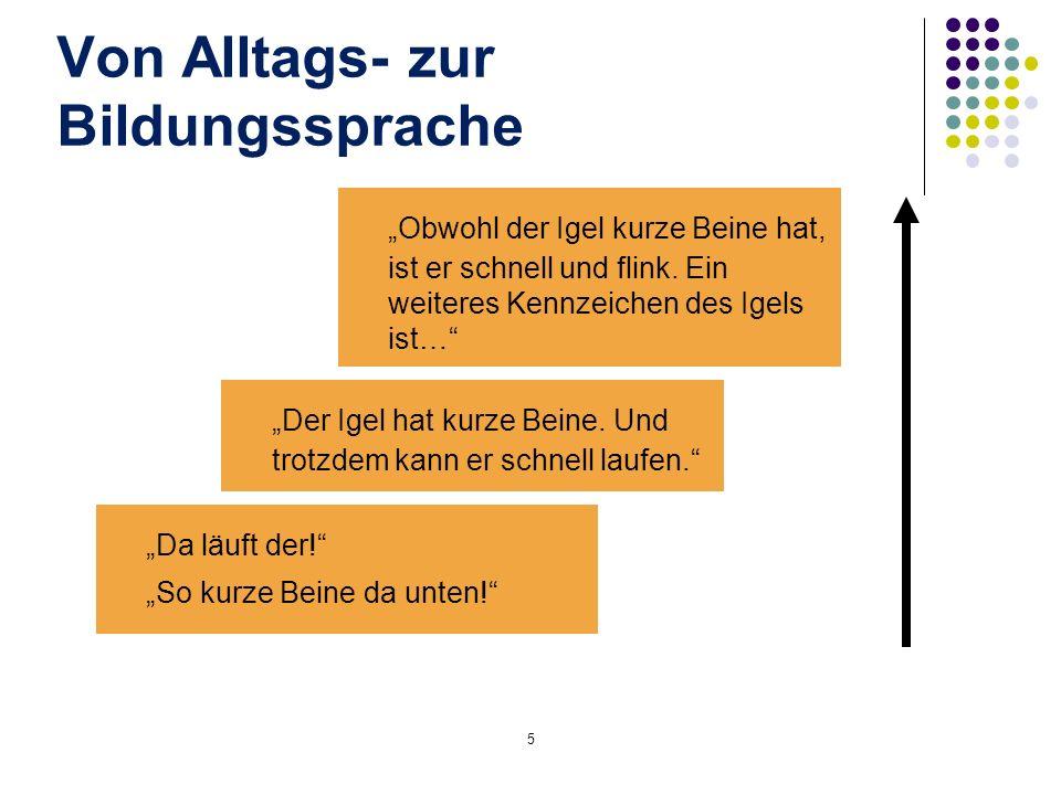 Konzeption der NB DaZ Raster mit Fähigkeitsbeschreibungen Dokumentationsbogen NB DaZ orientieren sich an den Zielvorgaben der KMK- Bildungsstandards Deutsch für die jeweilige Altersstufe