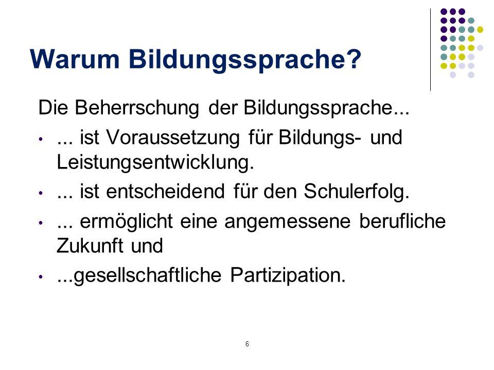 Konzeption der NB DaZ Beobachtungsbereiche: A.