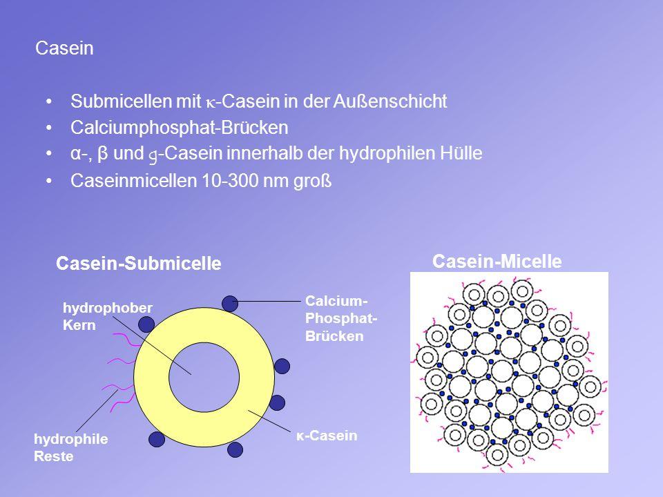 Casein Submicellen mit κ -Casein in der Außenschicht Calciumphosphat-Brücken α-, β und g-Casein innerhalb der hydrophilen Hülle Caseinmicellen 10-300