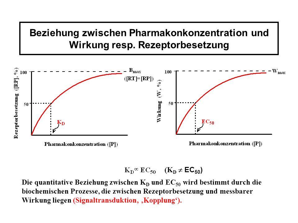 Beziehung zwischen Pharmakonkonzentration und Wirkung resp. Rezeptorbesetzung Die quantitative Beziehung zwischen K D und EC 50 wird bestimmt durch di