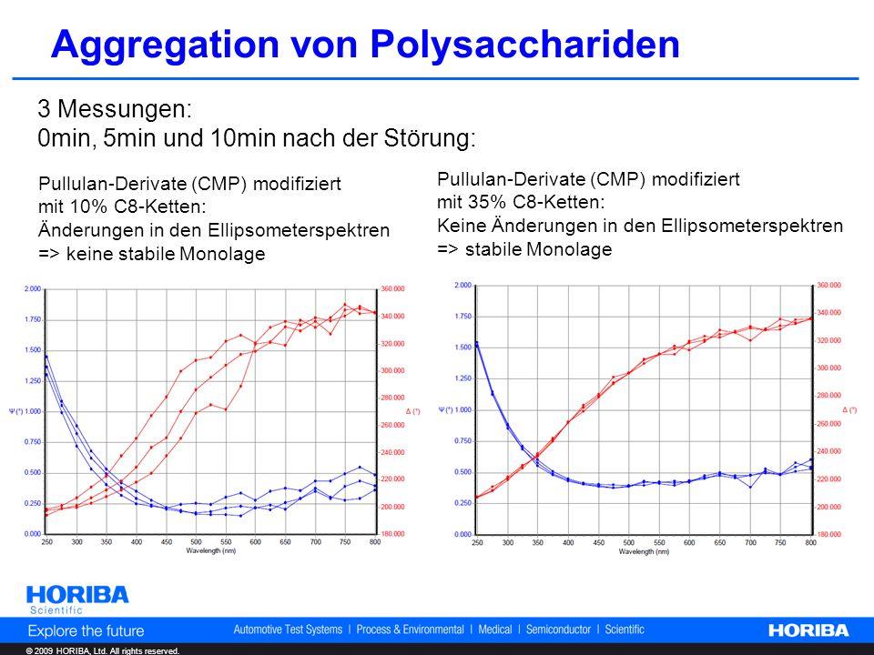 © 2009 HORIBA, Ltd. All rights reserved. Aggregation von Polysacchariden 3 Messungen: 0min, 5min und 10min nach der Störung: Pullulan-Derivate (CMP) m