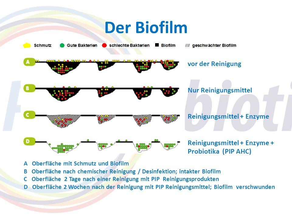 Der Biofilm vor der Reinigung Nur Reinigungsmittel Reinigungsmittel + Enzyme Reinigungsmittel + Enzyme + Probiotika (PIP AHC) A Oberfläche mit Schmutz
