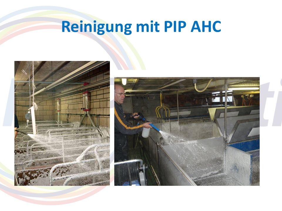 Reinigung mit PIP AHC