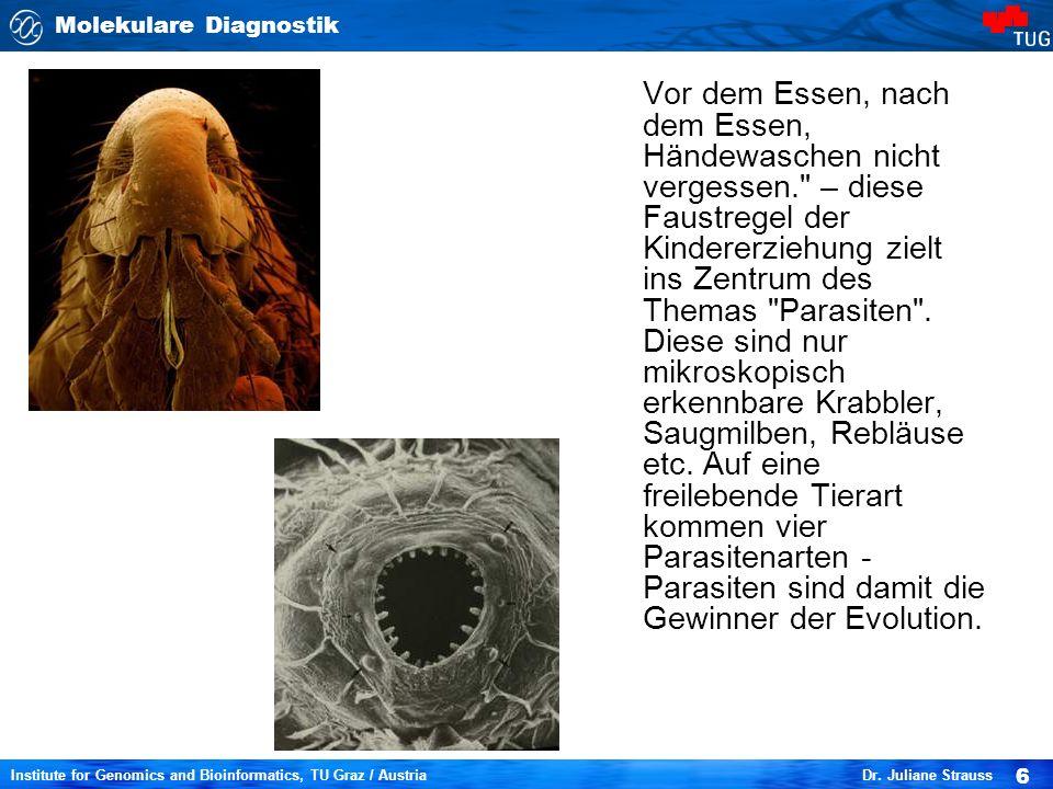 Molekulare Diagnostik 6 Institute for Genomics and Bioinformatics, TU Graz / Austria Dr.
