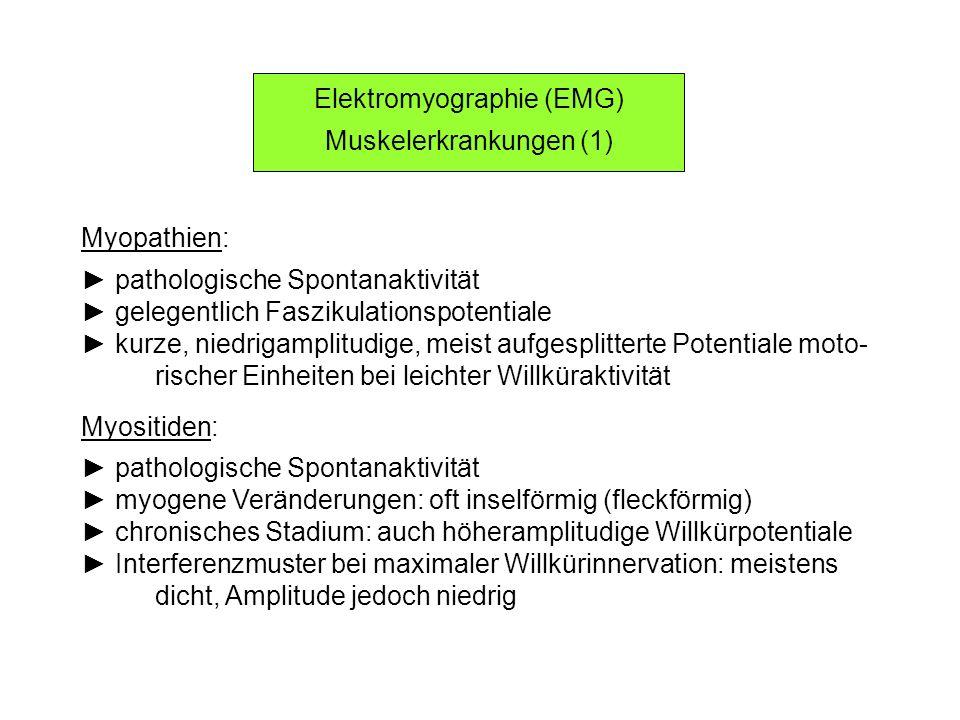 Elektromyographie (EMG) Muskelerkrankungen (1) Myopathien: pathologische Spontanaktivität gelegentlich Faszikulationspotentiale kurze, niedrigamplitud