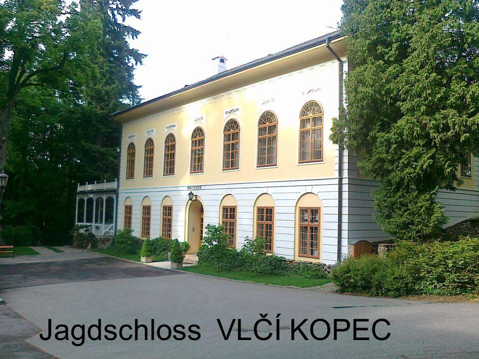 Ein kleines Schloss, das Vlčí kopec / Wolfsberg/ heisst, befindet sich in der Region Vysočina unweit von der Stadt Třebíč.